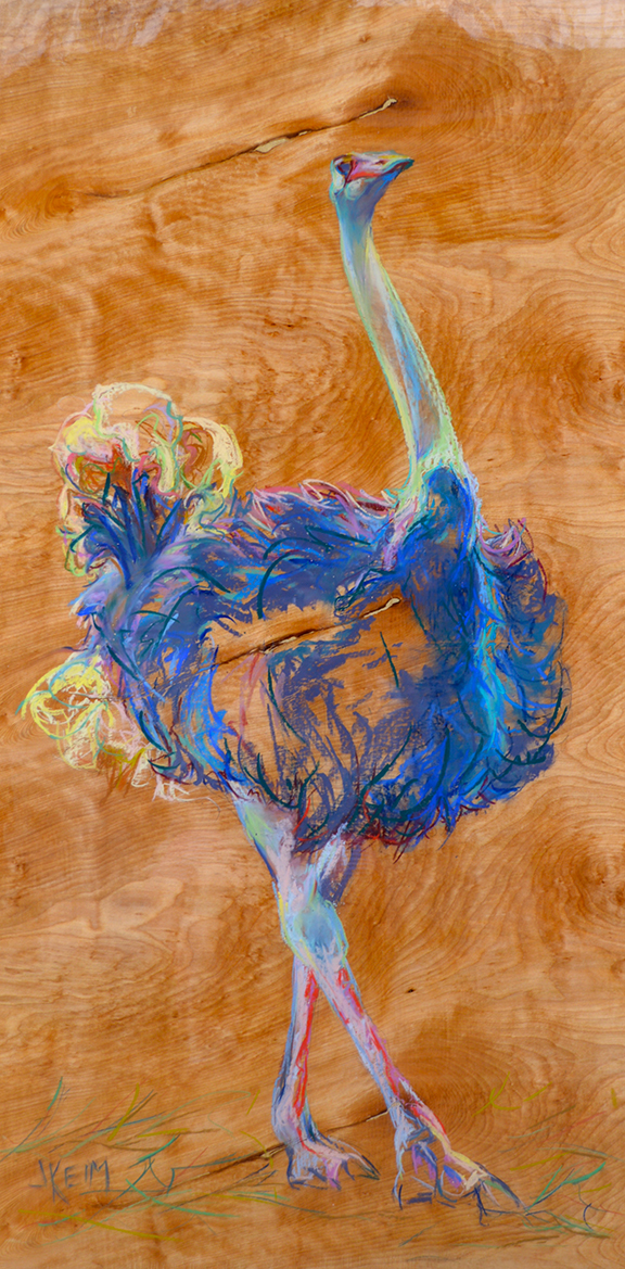 Ostrich Prance - Pastel on Wood Panel 24x48