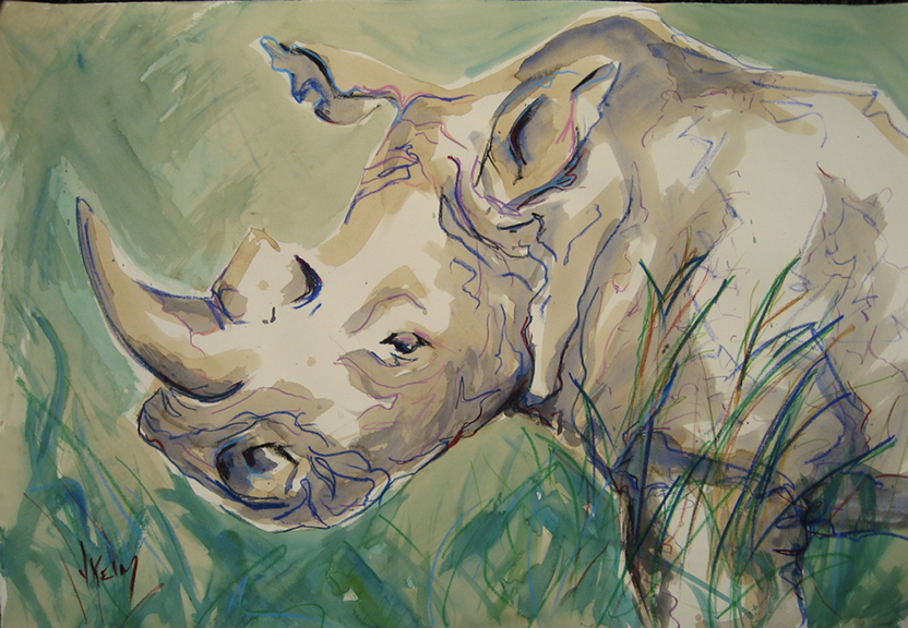 Rhino - Mixed Media 44x30