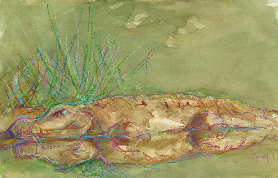 The Croc - Mixed Media 40x26